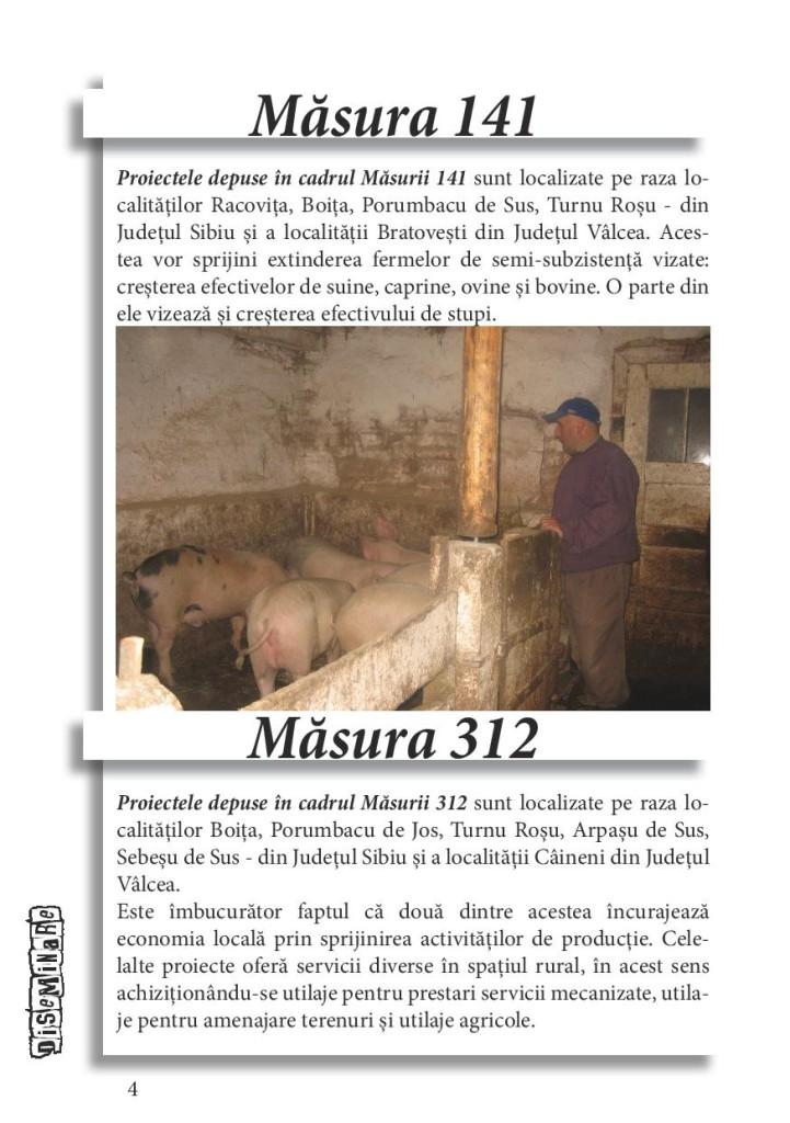 brosura diseminare SIII - etapa 3-page-004