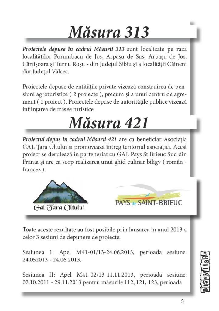 brosura diseminare SIII - etapa 3-page-005